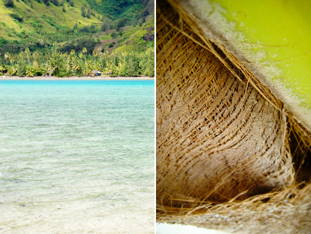 mountains, ocean, and tree travel image from the south pacific